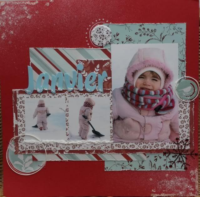 Janvier- Ah comme la neige a neigé! - Page 3 IMG_6903