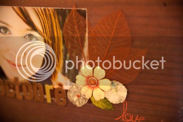 Octobre- Et tombent les feuilles _MG_3302