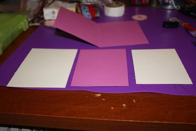 Défi '' cartes pour votre boîte'' JANVIER IMG_5701