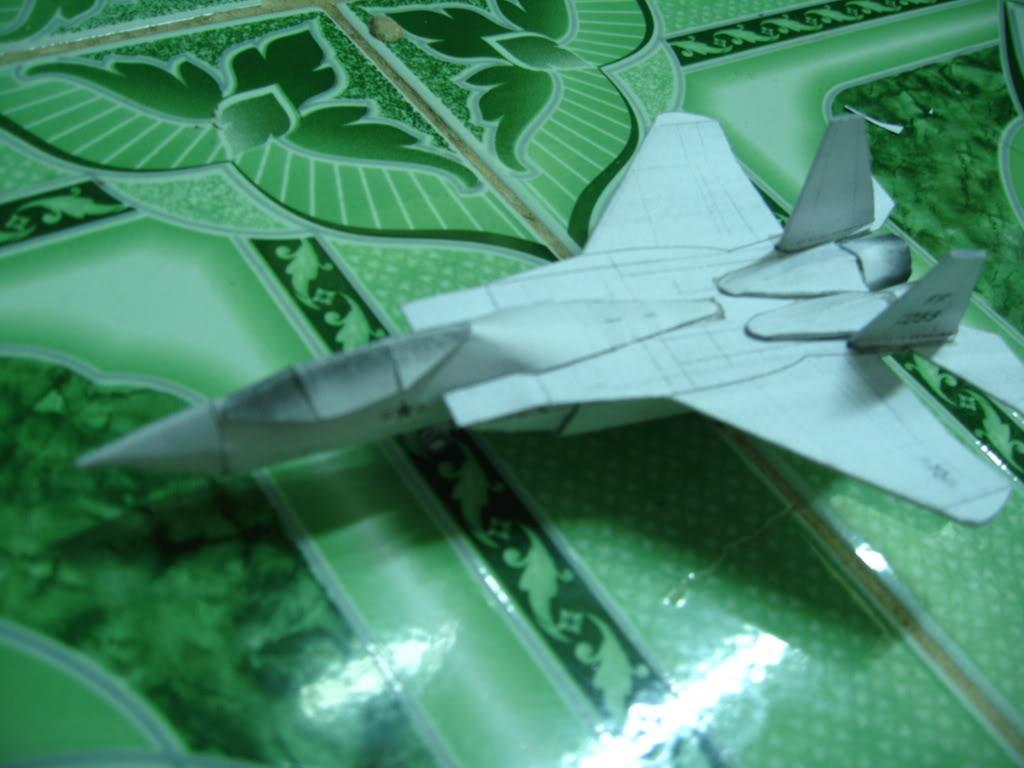 Mô hình giấy máy bay Mig-29 + F15 IMG_0821