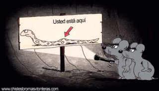 Imagenes graciosas Ratonesdentrodeboa
