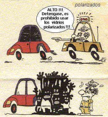 Imagenes graciosas Vidriospolarizados