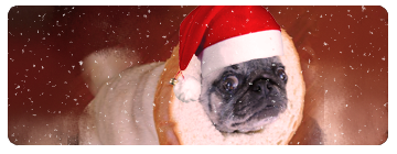 ^^ Birthday Thread ^^ - Page 3 Pugchristmassig