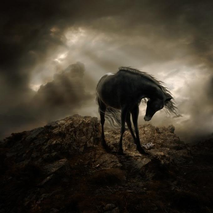Konji Beautiful-horses-and-unicorns13-1