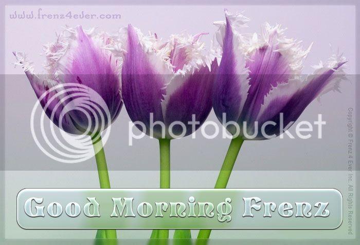 beautiful-good-morning-cards