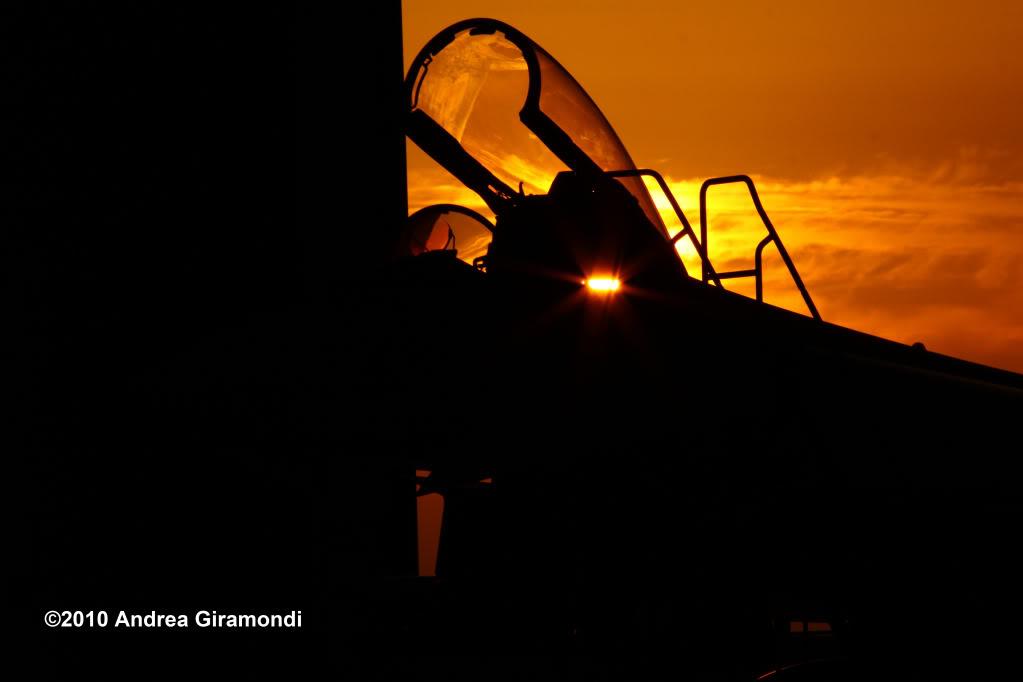 Armée Italienne/Forze Armate Italiane - Page 3 IMG_3545