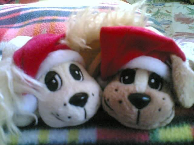 Pound Puppies Love em' or hate em' thread 05042008019