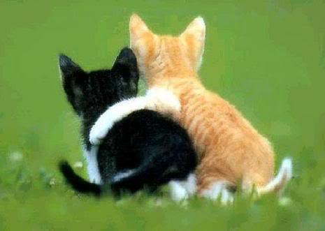 Volim te kao prijatelja, psst slika govori više od hiljadu reči Zagrljaj