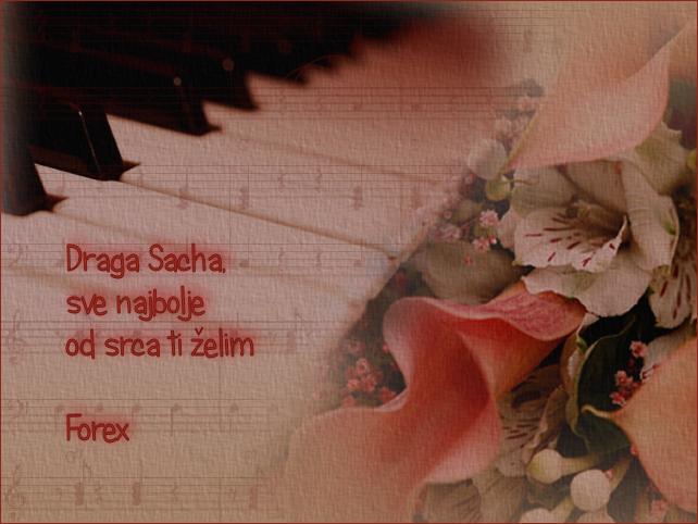 Sacha222 Sacha