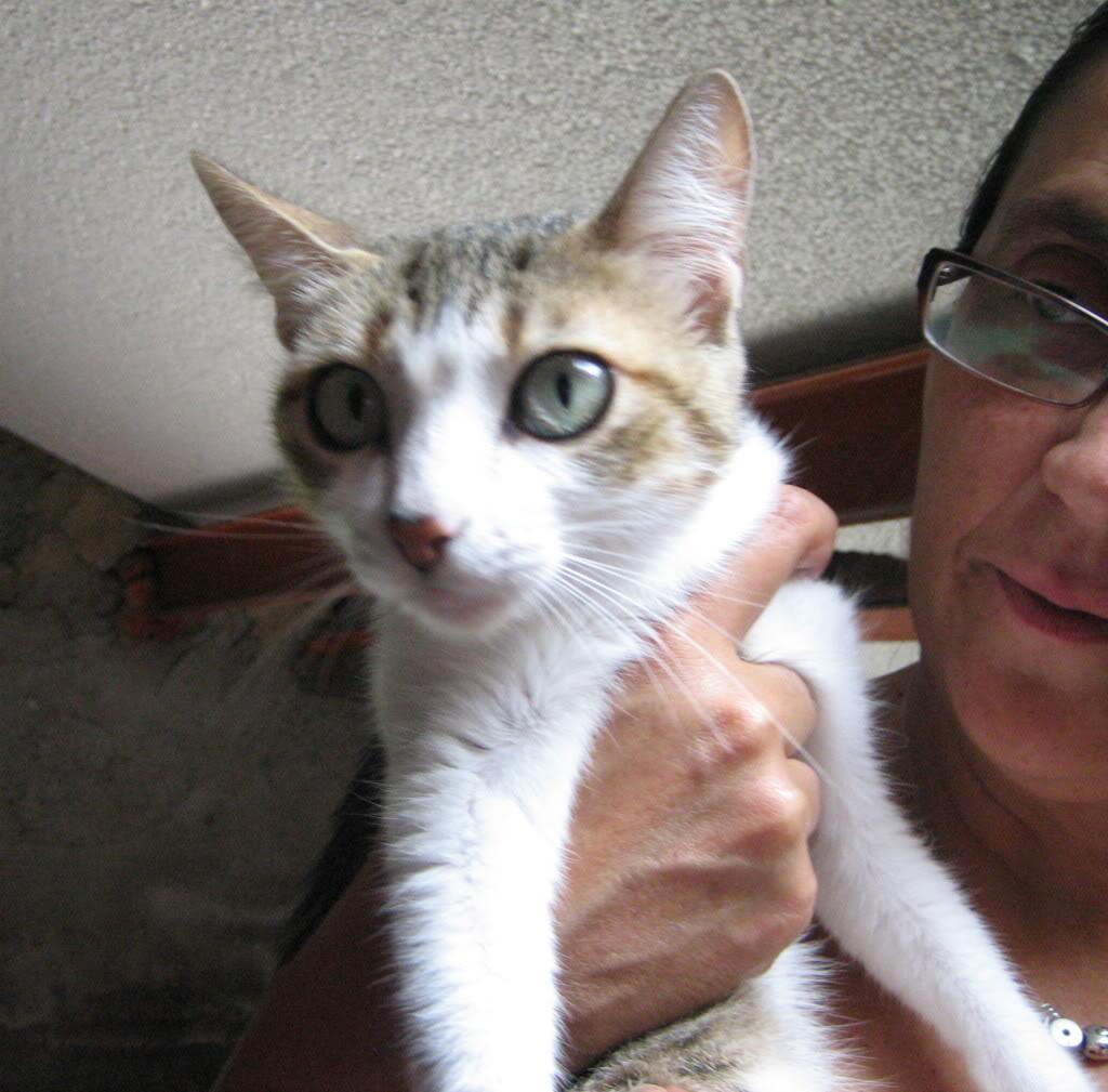 Marie, abandonada una y otra vez, siempre volvía a su casa… CF-ASTURIAS Marie2