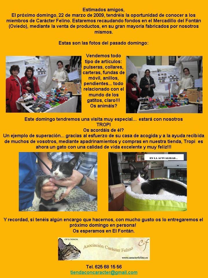 A tod@s l@s que estéis este domingo por Asturias! Presentacinmercadillo1