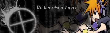 Video section