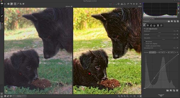 Brezplačni grafični & foto programi (za pregledovanje in obdelavo fotografij in slik) Rawtherapee-1_zpse3ab05fe