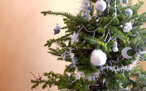 Praznična Božično-novoletna ozadja za na vaš računalnik (wallpapers) 2010_4a