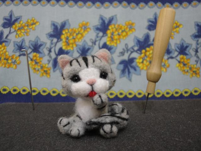 Altro giro altro gatto..... (ma sempre con gli stessi colori) DSC02154