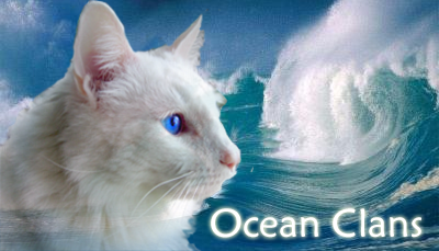 Ocean Clans Banners OceanClans2copy