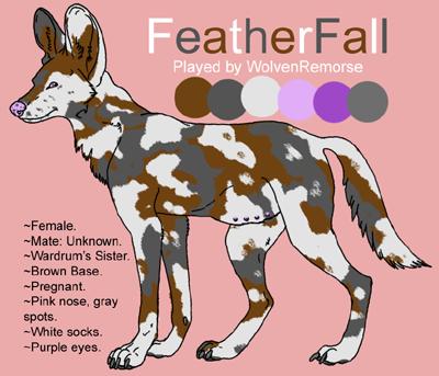 FeatherFall (Wild Dog) SmallFatherfall