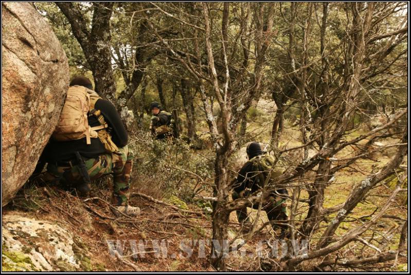NSW.Search the taliban 1180f2b9