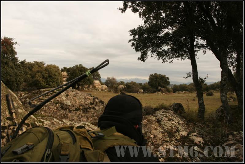 NSW.Search the taliban 54eb8b66