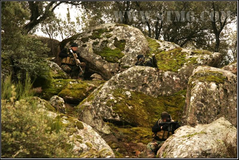 NSW.Search the taliban 9e70c1a1