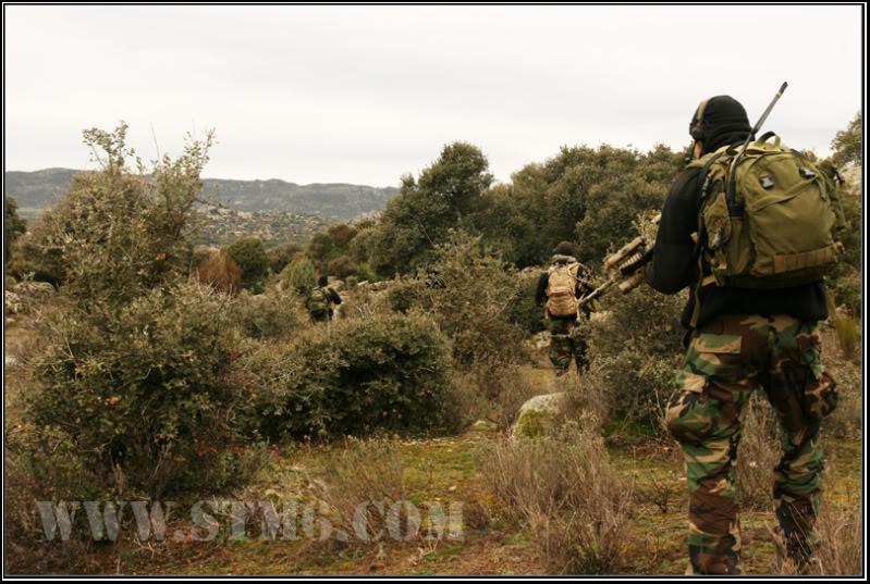 NSW.Search the taliban F27223ff