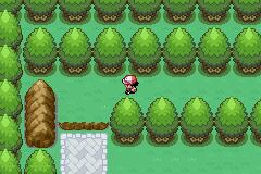 Pokemon Neon Pokemon_neon_05