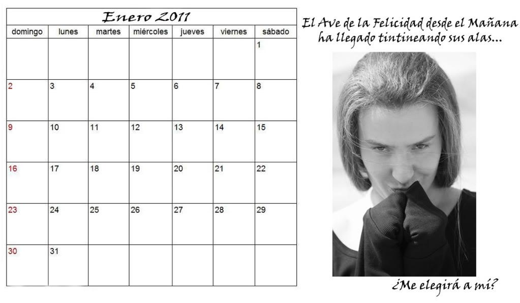Calendarios Vitas 2011 Vitasenero
