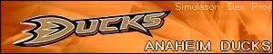 Simulation Des Pros Anaheim-2
