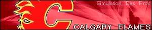 Simulation Des Pros Calgary-1