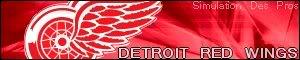 Simulation Des Pros Detroit-1