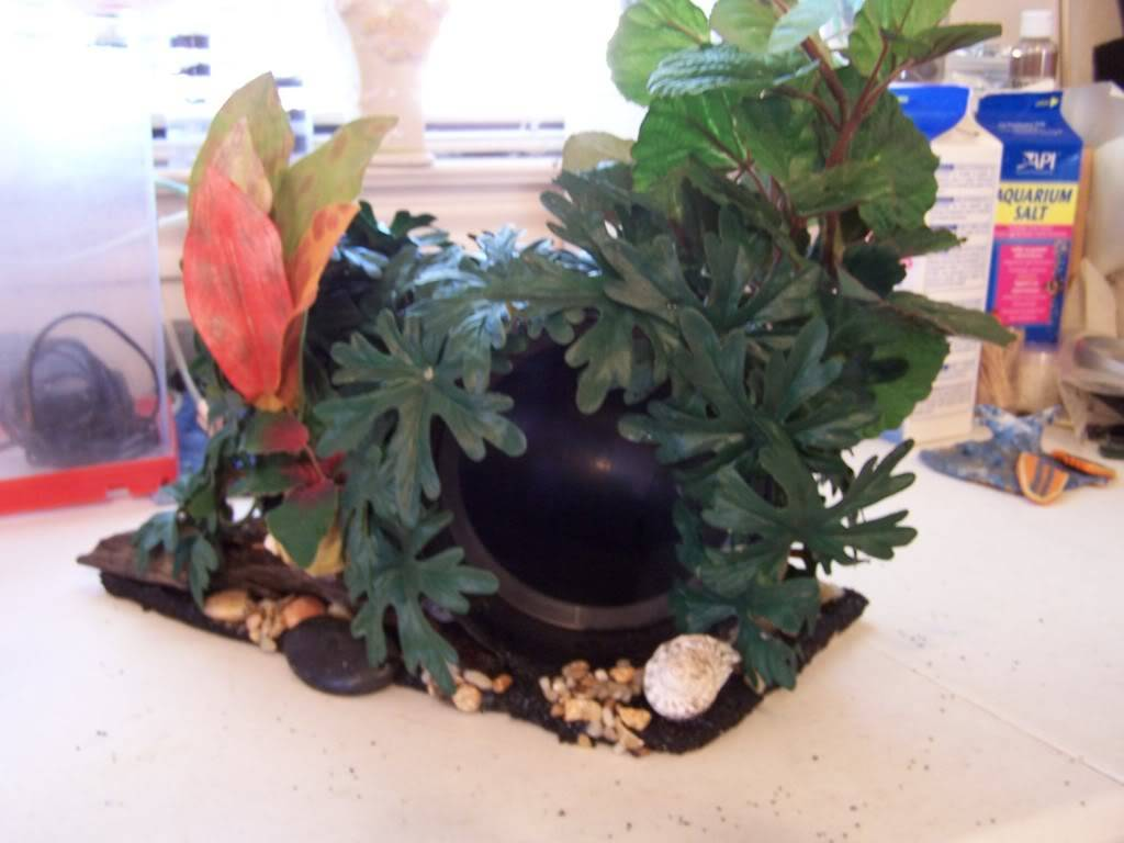 DIY tank tunnel Made by me 000_7987