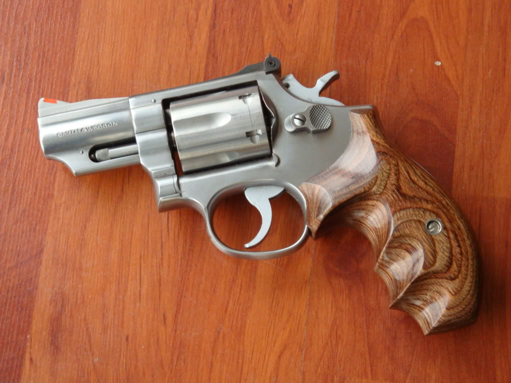 S&W 586 et 27 Walther009