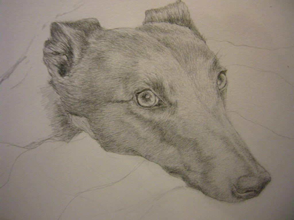 Sketches by Sally - Page 2 P1060956_zpsrej8ry7j