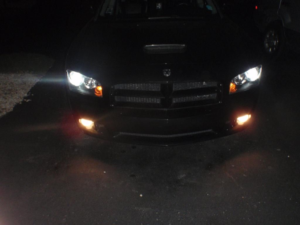 new fog bulbs PC190022_zps199faeee
