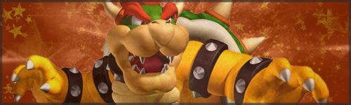 transmission de sake et fox Bowser10