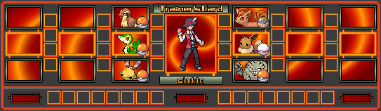 Sinnoh Region Gym Leaders NewSimCard2