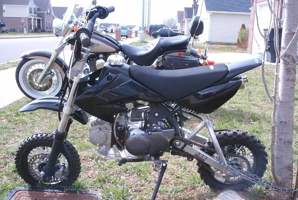 2004 SDG Speed Mini 107cc pitbike 01010026-1