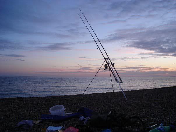 a few of my fish captures Nightfishing2