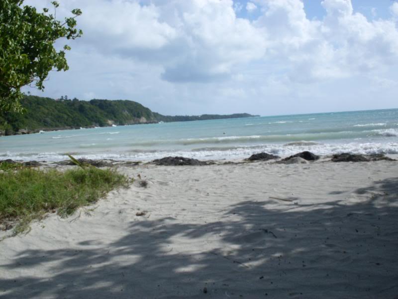 Je vis sur une île et j'ADORE les BJD! Vayu à la plage... - Page 8 Juin2013010_zps925ae7df