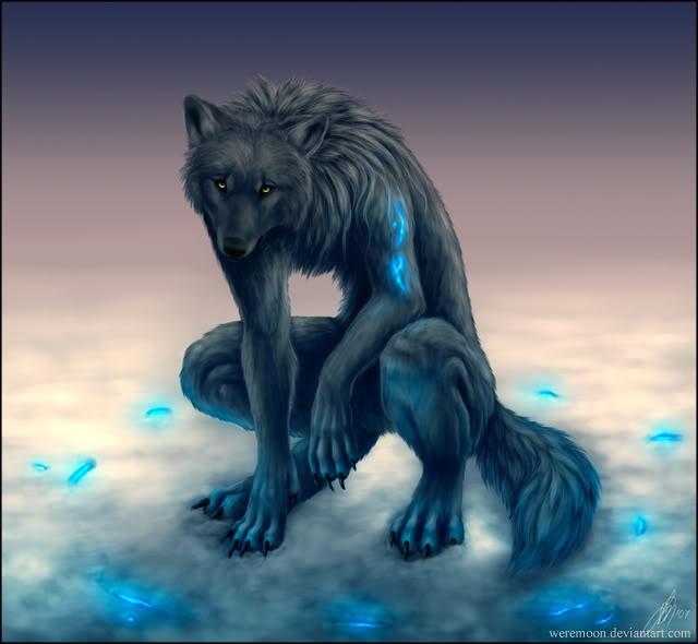 Forest of the Shamed Wolf D352ba8d306af36a