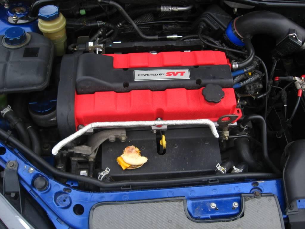 Blue Hedgehog Build 1-24-10G2002