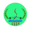 Chân dung nhà khảo cổ
