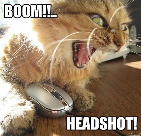 Maniac's Funny Pics Boom-headshot