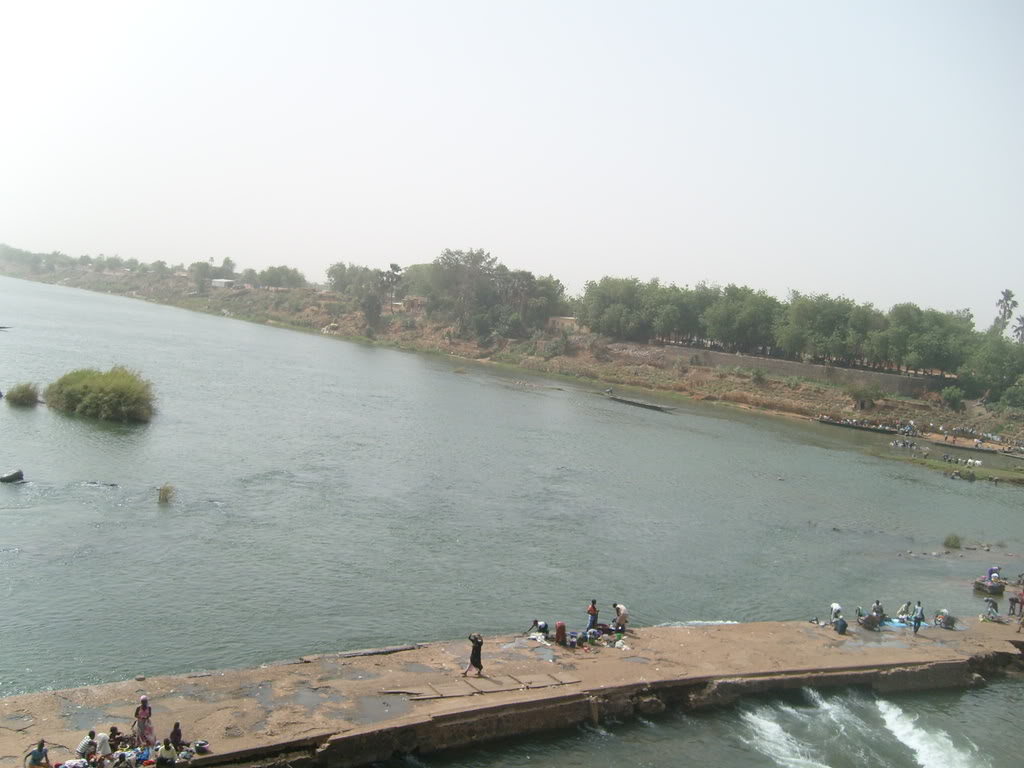 river senegal Pictures, Images and Photos