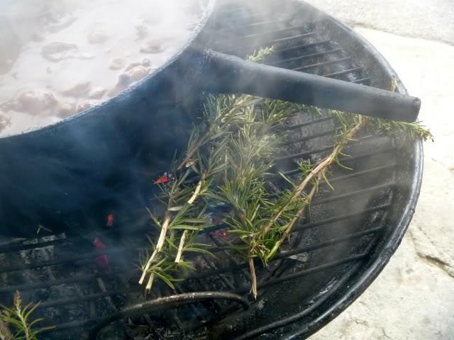 Romarin Smoke & daube de cerf au feu de bois ...  P1040571