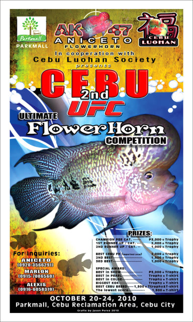 CEBU 2ND ULTIMATE FLOWERHORN COMPETITION: Download