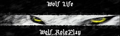 Wolf Life forum banners! Griffin-3