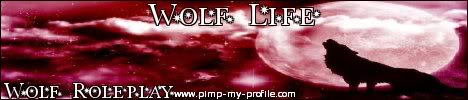 Wolf Life forum banners! Griffin-5