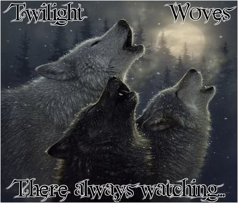 Twilight Wolves