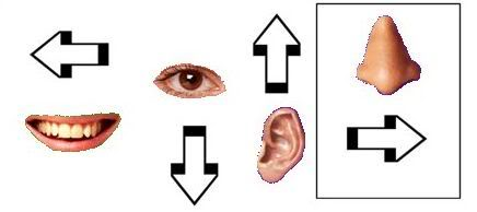 Dingbats: 'catchphrase': say what you see Dingbats10a